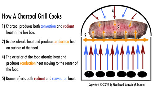 When Buying A Grill Understanding The Thermodynamics Of