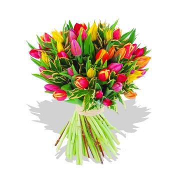 http://images.huffingtonpost.com/2010-04-23-tulips.jpg