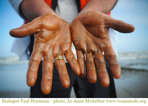 2010-05-19-oiled_hands.jpg