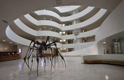 2010-06-10-spider.jpg