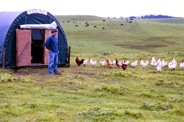 2010-06-17-daveevansmarinsunfarms_3.jpg