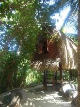2010-06-21-treehouse.jpg