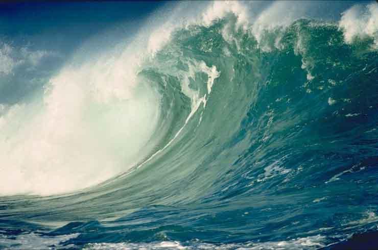 В Северной и Центральной Америке объявлена угроза цунами