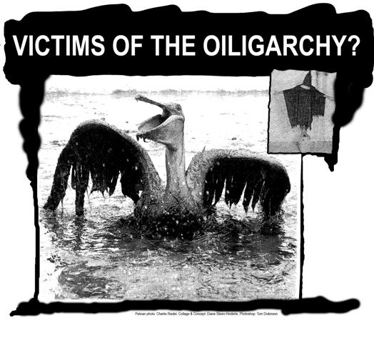 2010-06-24-Torturedpelicanwebsize.jpg