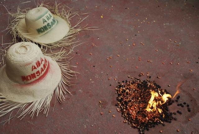 Straw hats and burning hybrid seeds