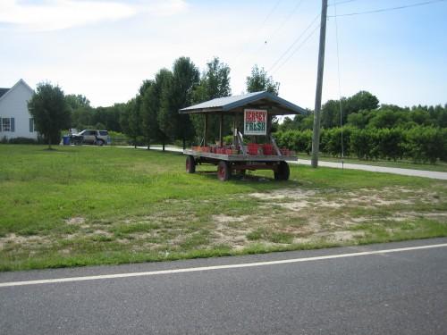 2010-07-14-30.jpg
