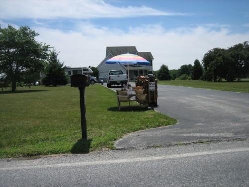 2010-07-14-31.jpg