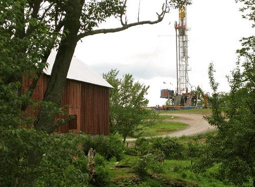2010-08-03-dimock1.jpg