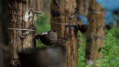2010-08-04-rubberdrip.jpg