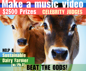 2010-08-19-happycowsvideocontest.jpg
