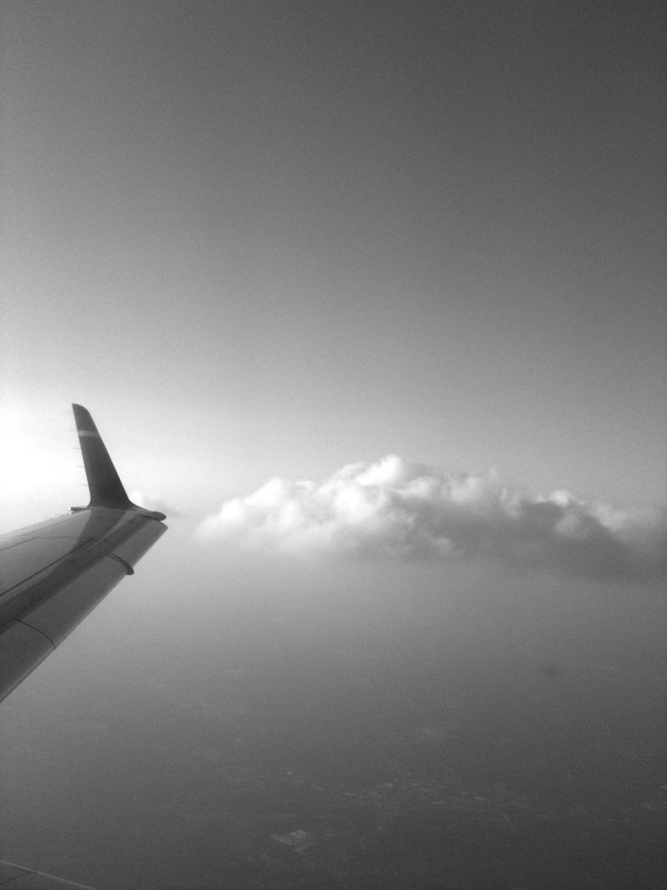 2010-09-01-wing.jpg