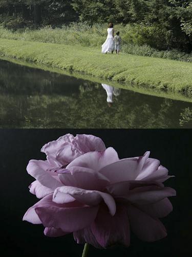 2010-09-12-pond_HuffPo_002.jpg