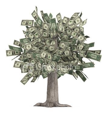 2010-09-24-money_tree.jpg