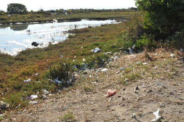 2010-09-29-CleanupareainSF.jpg