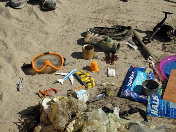 2010-09-29-smalllitterretrievedbydivers1.jpg