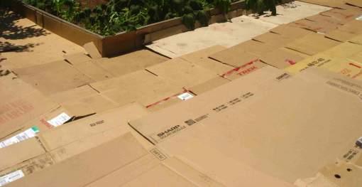 2010-10-05-cardboarding.jpg