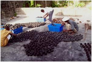 2010-10-06-Zafen_Haitian_Microfinance_Effort_D.jpg