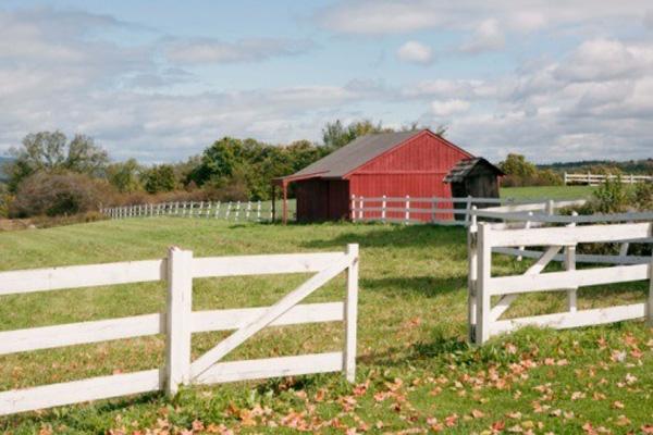 2010-10-09-rural.jpg