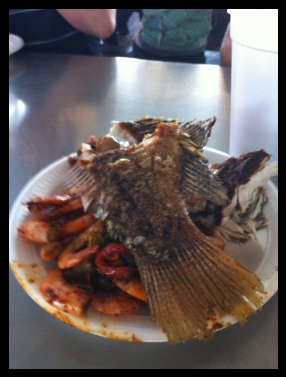 2010-10-11-fishplate.png