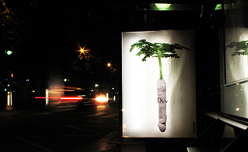 2010-10-14-HuffPoBrooklynStreetArtLUDOBioDildoWIDE.jpg