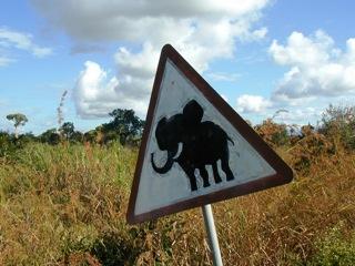 2010-10-15-elephant_sign.JPG