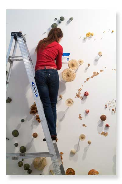 2010-10-19-3_mwienerarts_ladder_mush.jpg