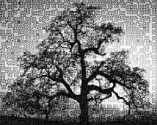 2010-10-19-oaktreebykerrymitchell.jpg