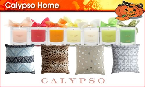 2010-10-26-CalypsoHomepanel1.jpg