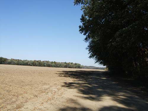 2010-10-28-floodplain.jpg