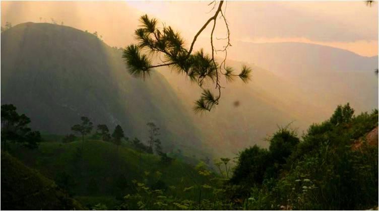 2010-11-07-HaitiHeaven_Hell_F.jpg