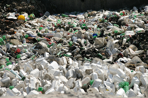 2010-11-10-PlasticPollution1.jpg