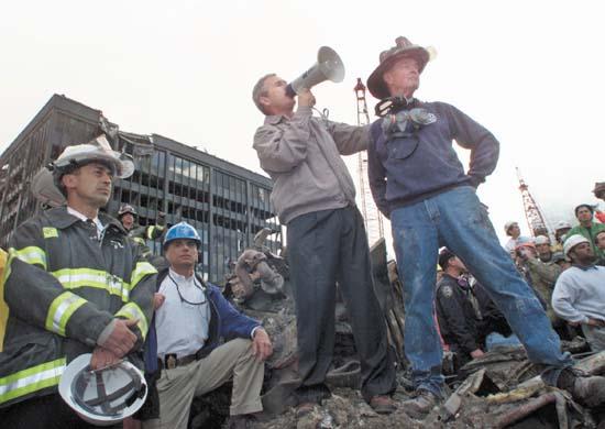 2010-11-12-Bush.jpg