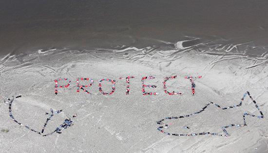 2010-11-15-gwichinaerialartprotecthp.jpg