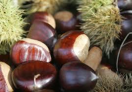 2010-11-16-chestnuts.jpg