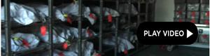 2010-11-17-morgue.jpg