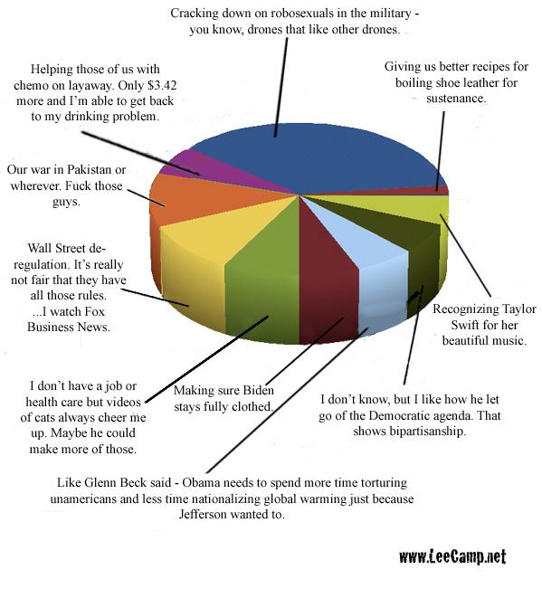 2010-11-18-20101118piechart_Obama_priorities.jpg