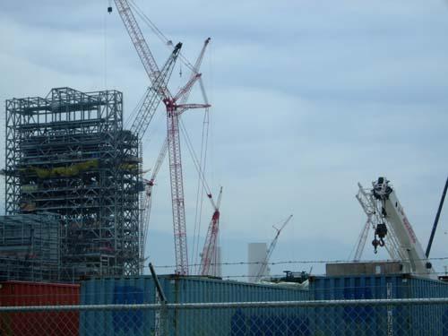 2010-11-18-Edwardsportplant.jpg