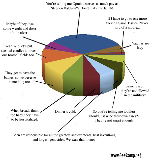 2010-11-24-piechart_broads.jpg