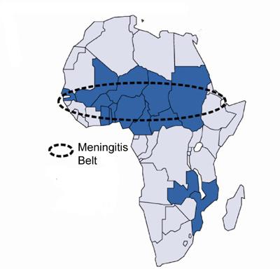2010-12-03-MeningitsBelt.jpg