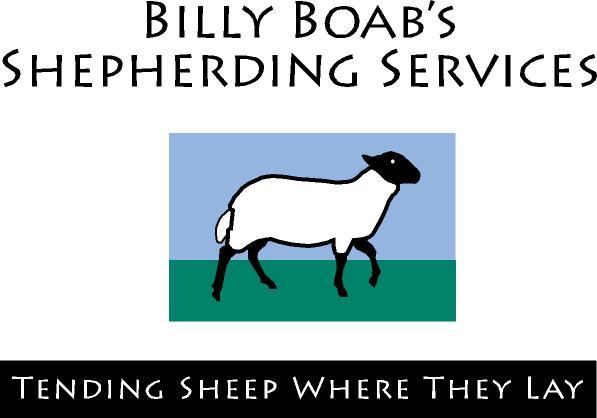 2010-12-07-shepherd2.jpg