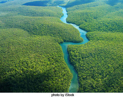 Get to know about Human Environment - Interactions Life in Tropical and Subtropical Regions (Ncert / Cbse Solutions & Revision Notes), Chapter Summary-Amazon Basin, The Ganga-Brahmaputra River Basin,CBSE / NCERT Revision Notes, CBSE NCERT Class VII (7th) | Social Studies | Geography, CBSE NCERT Solved Question Answer, CBSE NCERT Solution.