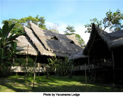 2010-12-13-Lodge.jpg