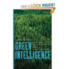 2010-12-26-covergreenintelligence.jpg
