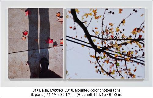 2010-12-29-at101228bb.jpg