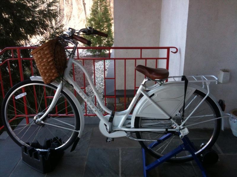 2011-01-05-bikebest.jpg