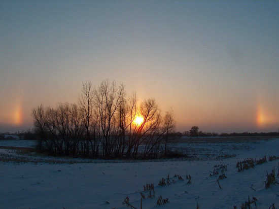 2011-01-12-Twinsundogs.jpeg