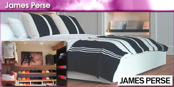 2011-01-13-JamesPersepanel1.jpg