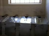 2011-01-15-Steamcabinet200x149.jpg