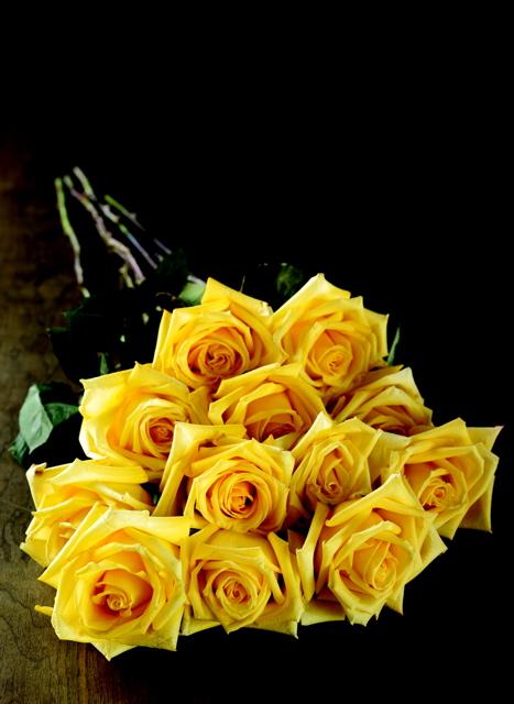 2011-01-19-yellowroses.jpg