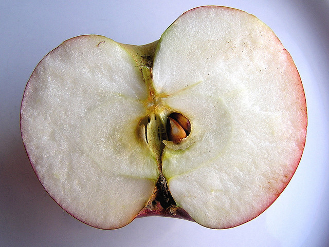 2011-01-20-apple_muffet.jpg